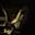 Могучие крылья великих орлов запросто отнесут тебя в любую точку Арды. А иногда могут даже до главной реактора подбросить. (За выход на главную)
