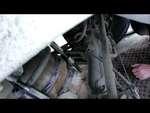 Кот застрял в пружине автомобиля.,Animals,,