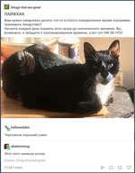 У 1Ыпд8-1Иа1-аге-дгеа1 ЛАЙФХАК Вам нужно ежедневно делать что-то в строго определенное время (например, принимать лекарство)? Начните каждый день кормить кота сразу до назначенного времени. Вы, возможно, и забудете о запланированном времени, а вот кот НИ ЗА ЧТО! hollowedskin Чертовски хороший с