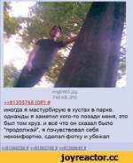 """img0465.jpg ?48 KB JPG »81355768 Г0Р1 # иногда я мастурбирую в кустах в парке, однажды я заметил кого-то позади меня, это был том круз. и всё что он сказал было """"продолжай"""", я почувствовал себя некомфортно, сделал фотку и убежал »81360256 # »81363748 # »81368649 #"""