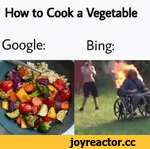 How to Cook a Vegetable Google:Bing: